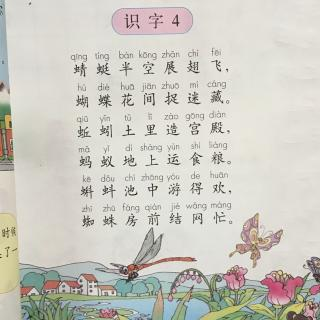 人教版小学语文一年级下册-识字四图片
