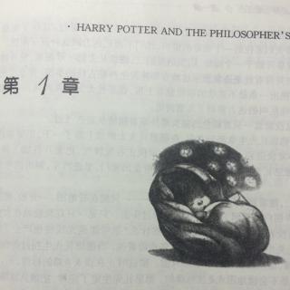 学校男孩第4部活_哈利波特与魔法石(一)大难不死的男孩4