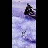 折枝 演唱:小坠