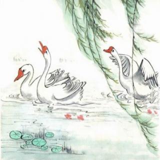 唐诗三百首之二—咏鹅