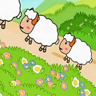 机智的小绵羊