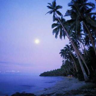 【陶立夏】岛屿来信 斐济