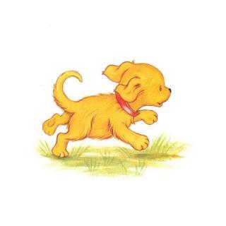 微信手绘头像狗