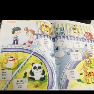 爱文英语  去动物园2>