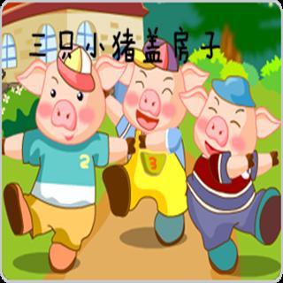 老妈通奸故事_勤诚宝贝故事屋·园长妈妈讲故事——《三只小猪盖房子》