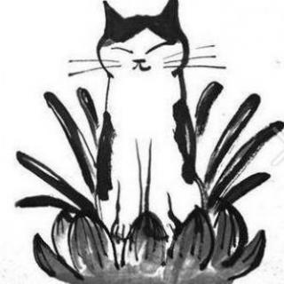 九尾猫的故事