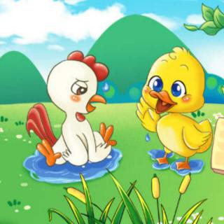 事 荔枝FM 小公鸡和小鸭子 在线收听 末末妈儿童故事 荔枝FM图片