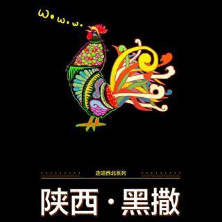 第28期:陕西美食黑撒美食溪食京街图片