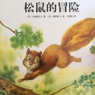 西顿动物记《松鼠的冒险》