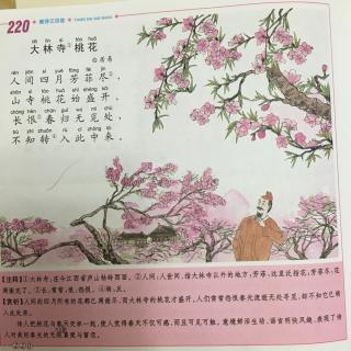【20160708】大林寺桃花-古诗诵读图片