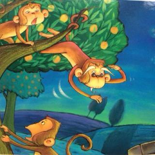 【猴子捞月亮】在线收听_听小树妈妈讲故事_荔枝图片