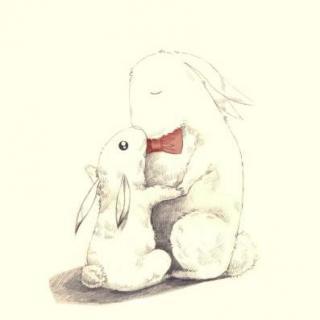 介绍:                              小孩子问妈妈 兔子