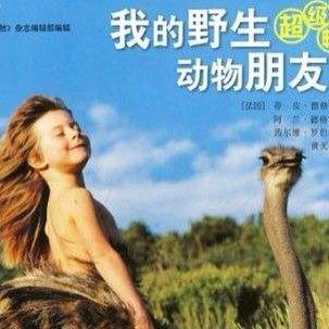 《我的野生动物朋友》野生动物就像我家里人一样 -邵雨桐