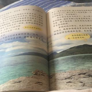 【22富饶的西沙群岛】在线收听_葡萄沟课文_荔枝
