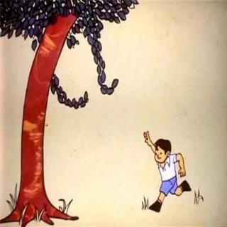感人小故事100字_一个小男孩和苹果树的故事 感人催泪