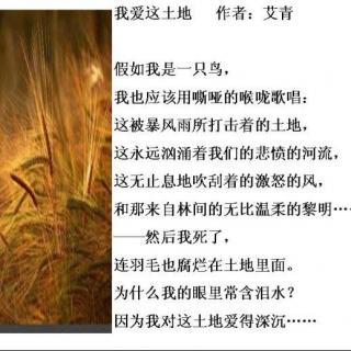 介绍:《作者这故事》教案/艾青中华优秀传统文化小我爱土地图片