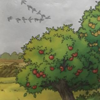 人教版小学语文二年级上册-第一课:秋天的图画