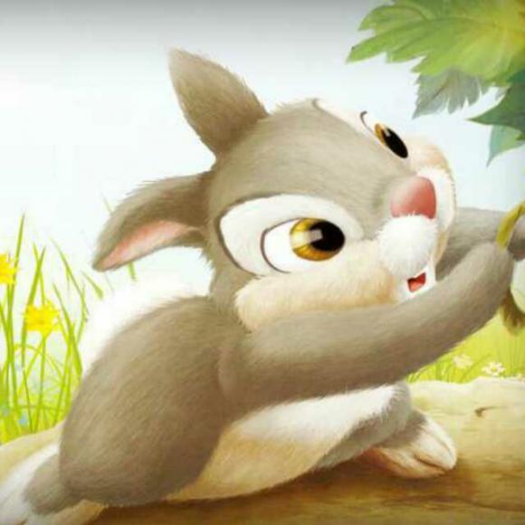 小白兔与小灰兔