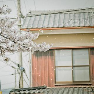 日本民谣:日常即修行
