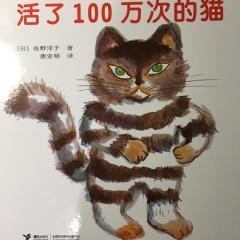 活了100万次的猫🐱-20161010