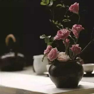 319 散文《相忘于江湖》作者:简媜  朗读:萧晗