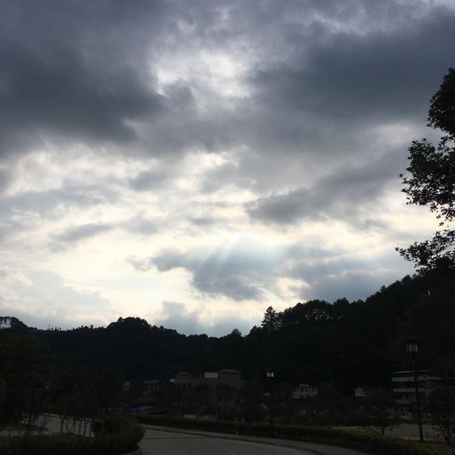 【禅语夜话】风从哪里来