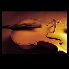 提琴爱人(引 开始的开始)