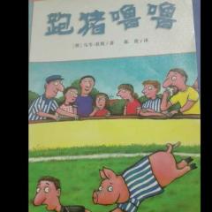 跑猪🐷噜噜
