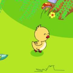 佳佳小朋友讲故事--迷路的小鸭子