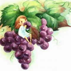 弟弟摘葡萄
