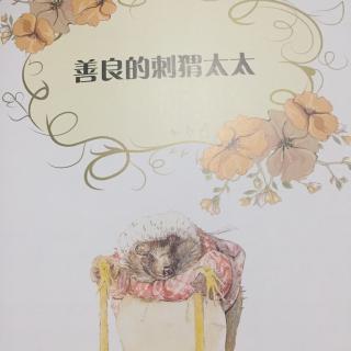 彼得兔经典故事集-善良的刺猬太太图片