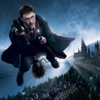 关于哈利的那些事