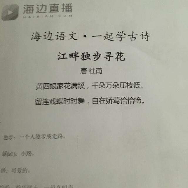 20161031 江畔独步寻花