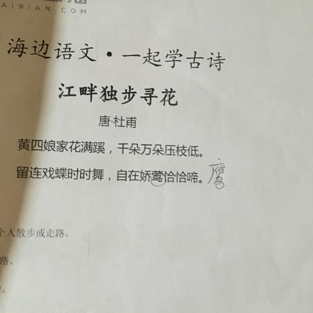 20161101 江畔独步寻花