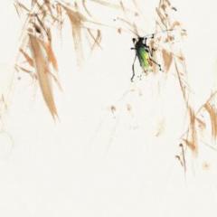 [給孩子的散文]沒有秋蟲的地方 葉聖陶