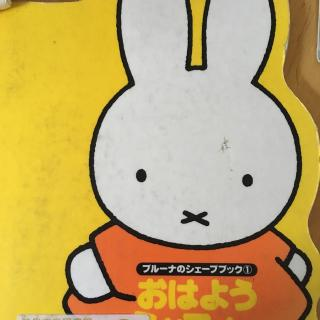 【早上好,米菲兔おはよう ミッフィー】在线收听_日语图片