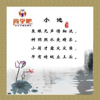 小池—杨万里图片