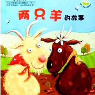 两只羊的故事图片