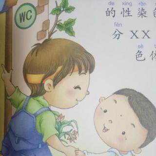 男生打女生pp的故事_【女孩和男孩是怎么来的?】在线收听_慧慧妈故事屋