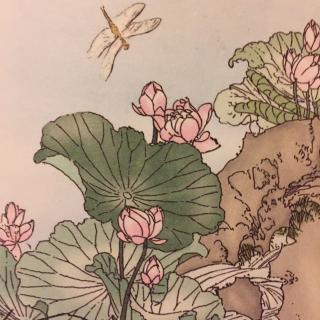 小池-杨万里图片