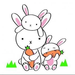 """可可看着妈妈,大声的说:""""妈妈,我知道我将是山谷里面最漂亮的小兔子"""
