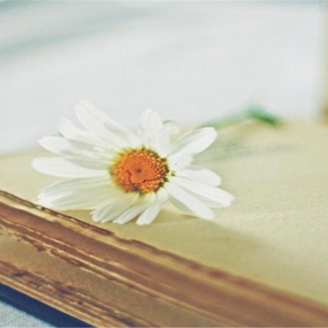 [給孩子的詩]詞兩首(水仙、猜謎 )胡適