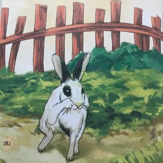 西顿动物故事-小战马03(结局)图片
