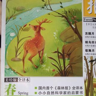 森林报-春2