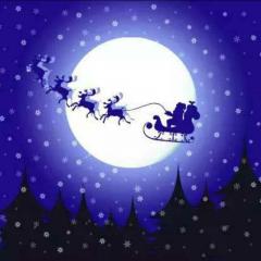 圣诞🎅之夜🎁