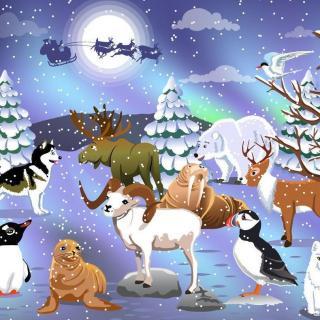 圣诞森林的故事(5)