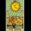 塔罗解析——月亮