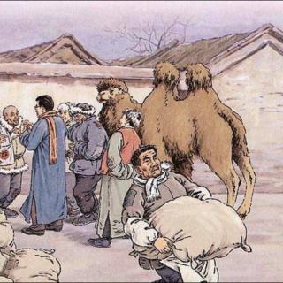 冬阳 童年 骆驼队——林海音图片