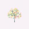 慢悟   今日点歌:一颗会开花的树