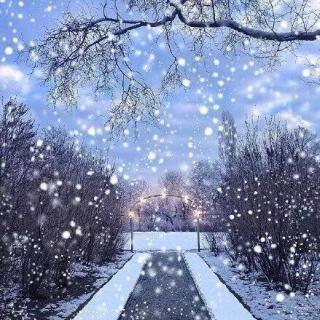 qq下雪风景动态头像